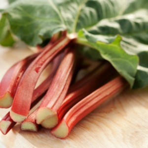 graines-de-rhubarbe